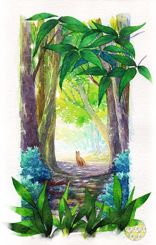 風の通り道 Illust of (۶•̀ᴗ•́)۶┌┛',;';≡ 透明水彩 forest AnalogDrawing fox original アナログ scenery background