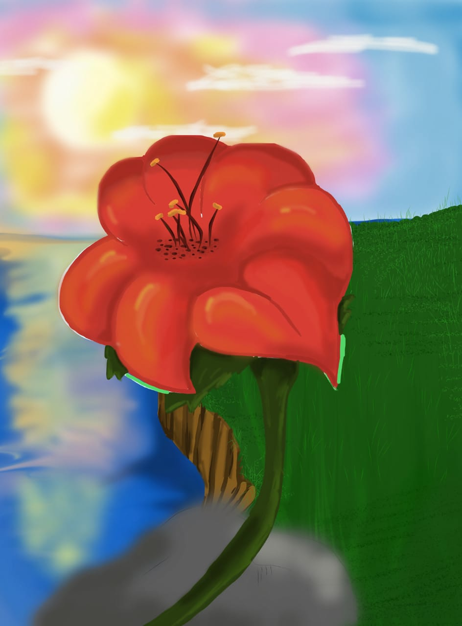 First drawing :) Illust of hbc26 Sunrise flower view scenery