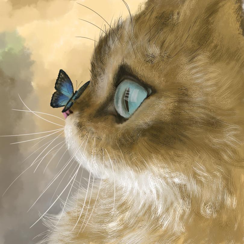 猫猫 Illust of Qy_清炎 DOGvsCAT_CAT medibangpaint リアル絵