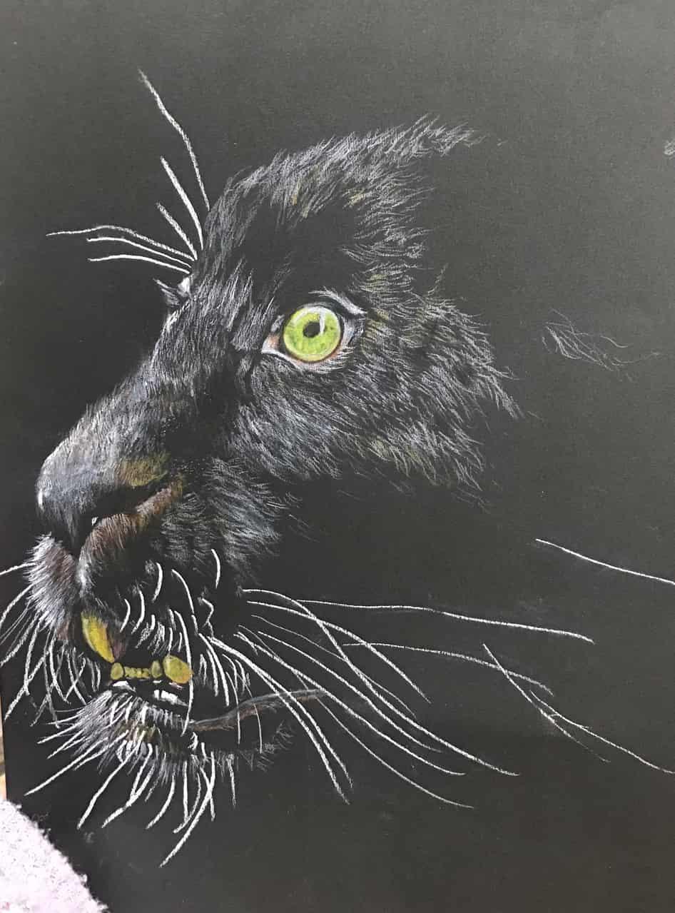 暗闇の中の黒豹 Illust of なっちゃん 色鉛筆画 coloredpencil クロヒョウ illustration 黒豹