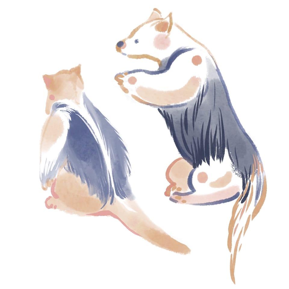 Animals Illust of Heng L August2021_Animal animal