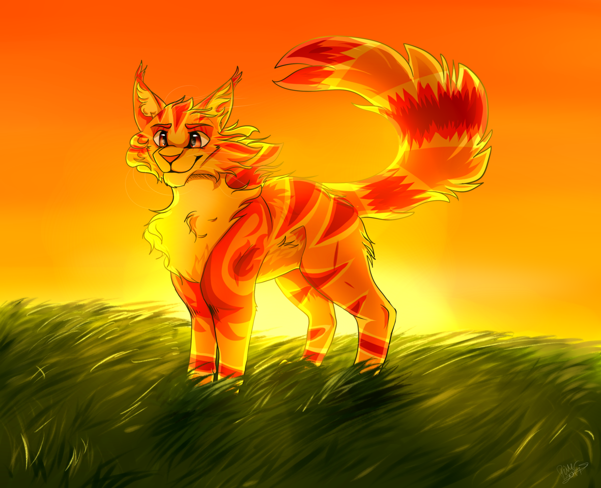 On top of the world .:Warrior Cats:.