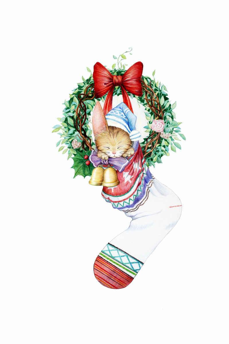 x'mas soxcat Illust of beach st Christmas animal sox リース cat ソックス 靴下