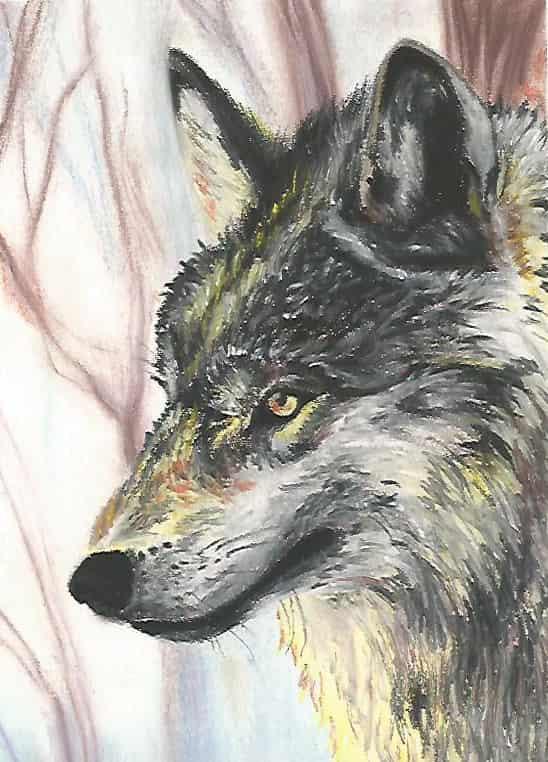 Wild dog Illust of Vinnymukay DOGvsCAT_DOG アナログ wolf