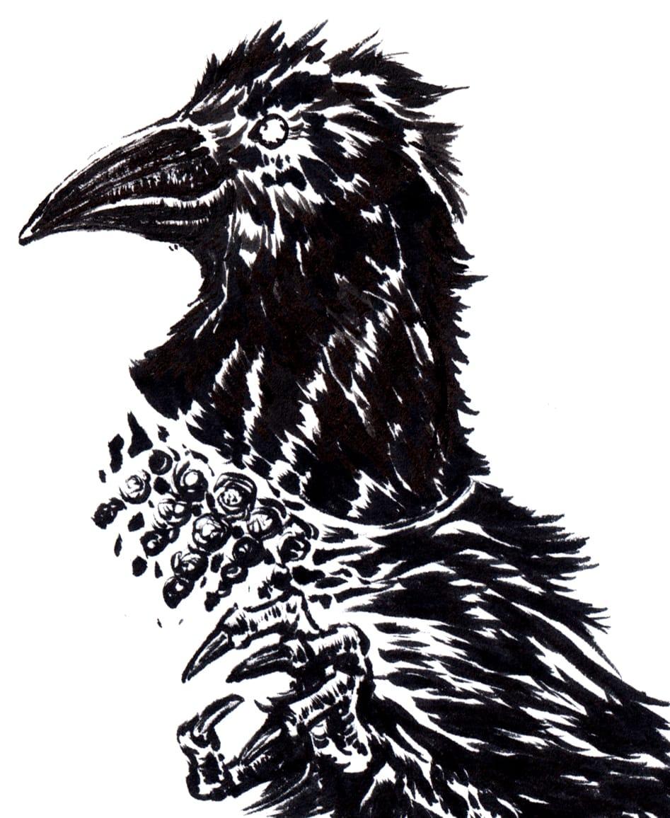 鴉獣人 Illust of 竹林一 May2021_Monochrome art 鴉 獣人 monochrome monster oc birds 爪 カラス black