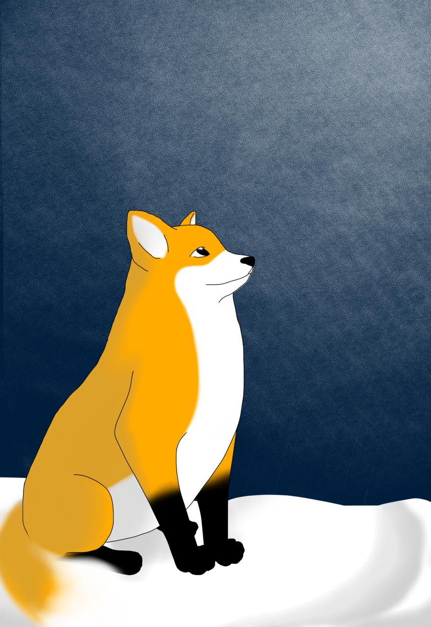 冬天來了嗎? Illust of 進寶 ArtToPaper2017 night 東 animal 貼圖 fox snow 胡 illustration 狐狸 winter 第一次參加medibang比賽