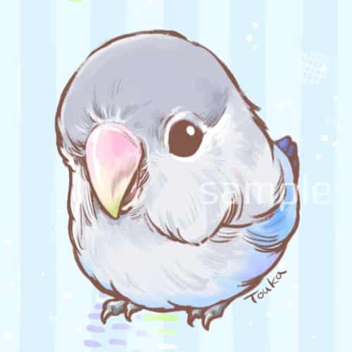 コザクラさん Illust of 橙香 illustration デフォルメ インコ birds コザクラインコ