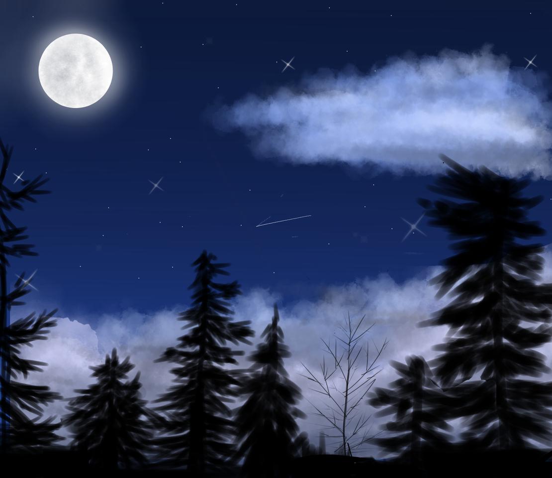 Magical night Illust of Shadow666 medibangpaint