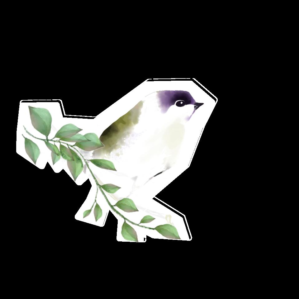 Birdy Illust of Sunevto July2020_Contest:Anniversary birds animal ARTstreet_Rank illustration watercolor original