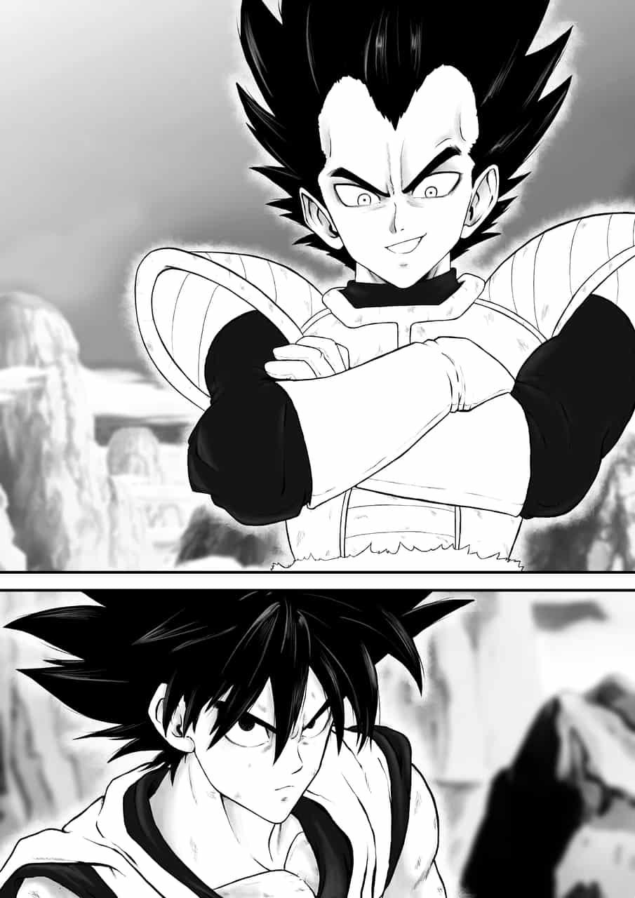 Vegeta vs Kakaroto  Illust of Derwelt manga DRAGONBALL fanart animeart Goku portrait anime mangaart Vegeta DragonBallZ