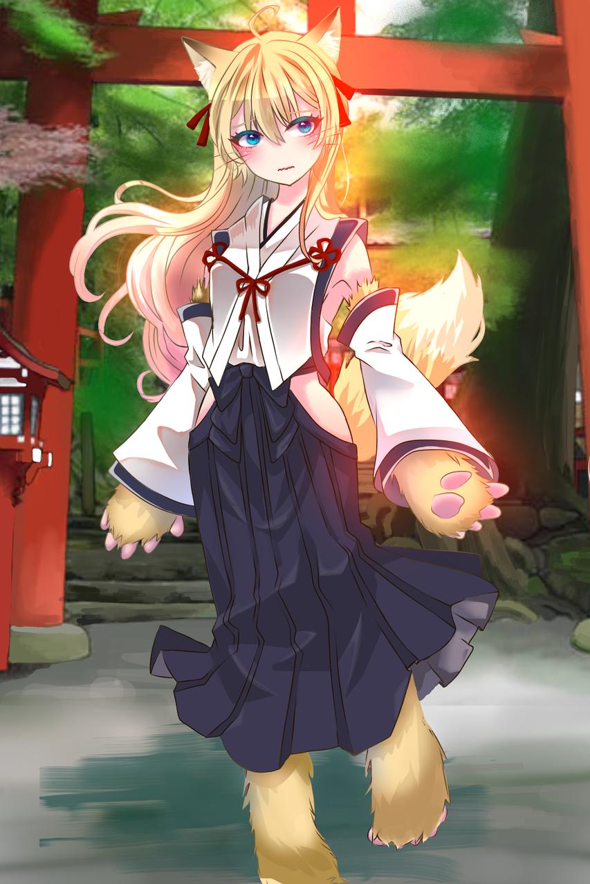 狐の女の子 Illust of 空条優太郎 medibangpaint blonde 巫女服 girl けもみみ oc 青目 fox 神社 巫女