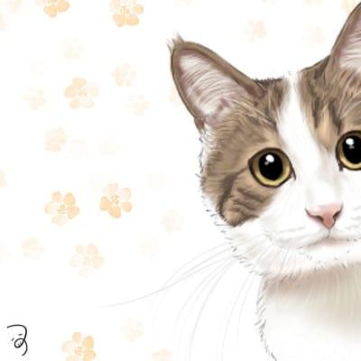 きじしろくん。 Illust of つぅ cat キジ白