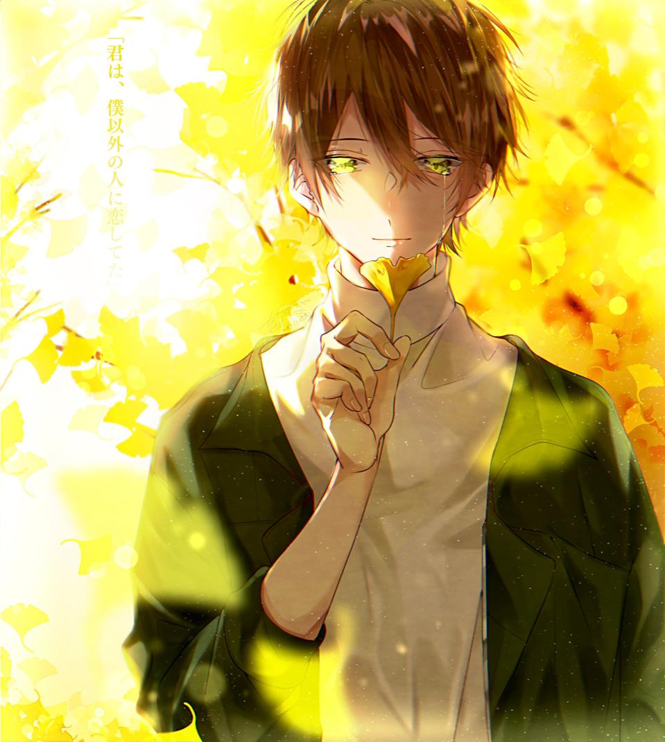 📒 Illust of 都良 イチョウ illustration autumn boy