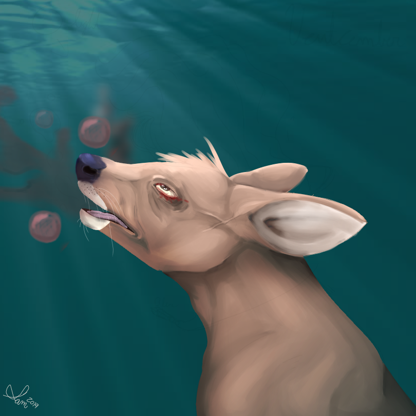 Ventcember Day 1 [Drowning] Deer
