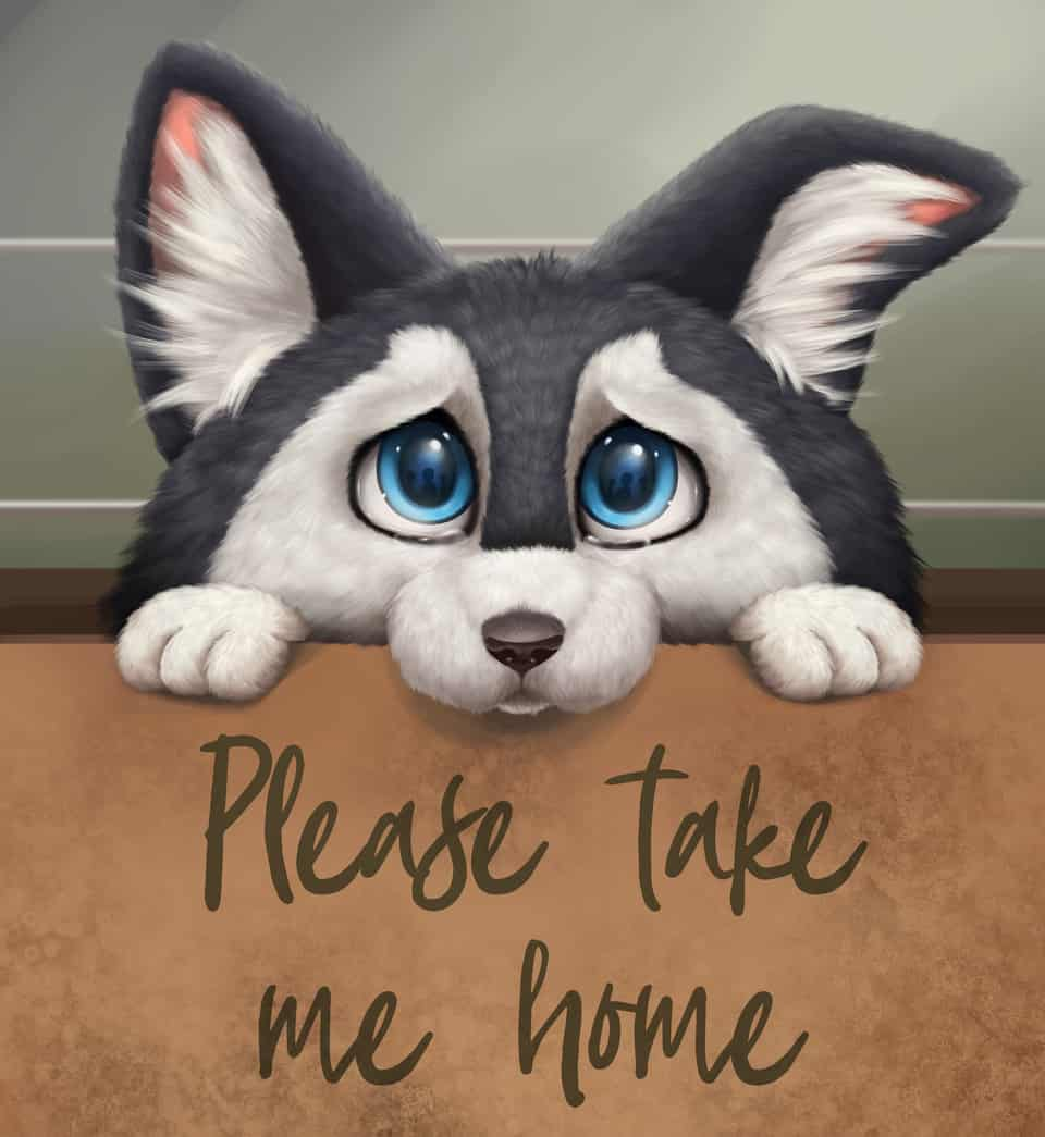 Please take me home Illust of 猫雨 September2020_Contest:Furry dog