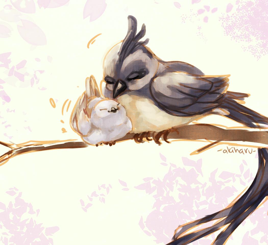 snuggle Illust of AkiHaru medibangpaint birds 1hDrawingChallenge illustration painting