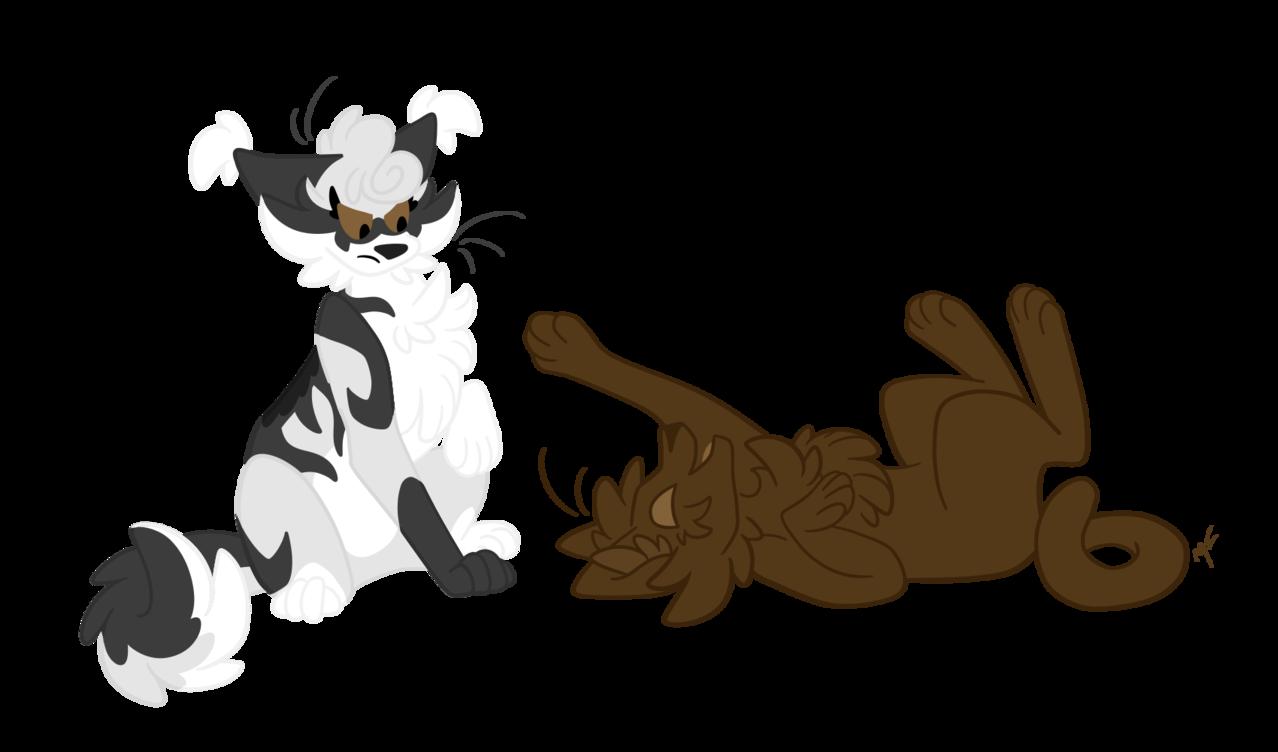 Illust of ✧ Midnight ✧ cat medibangpaint