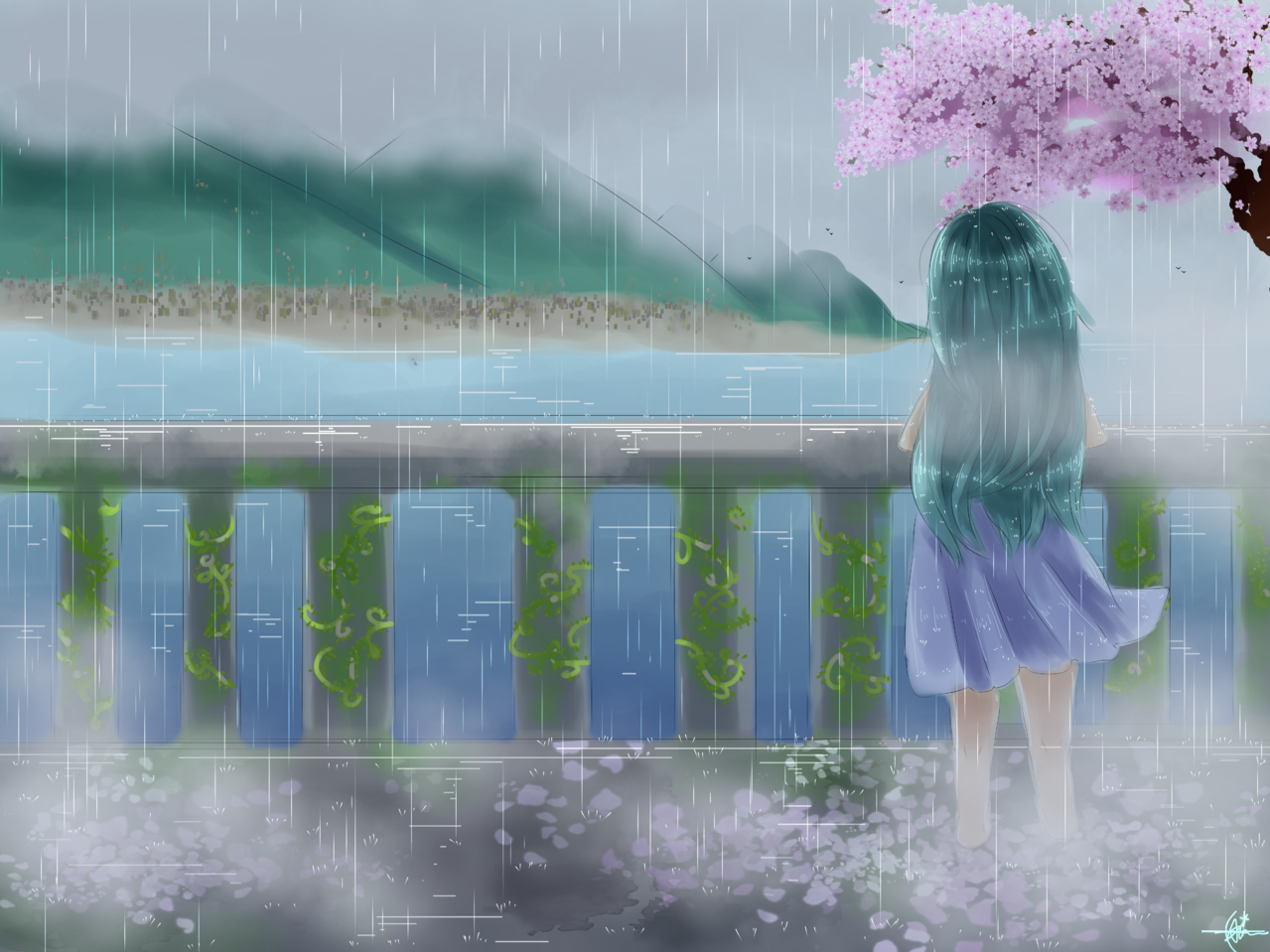 cherry blossoms bloom in the rain Illust of Qiya Art original girl alone rain medibangpaint sakura rainy beach oc