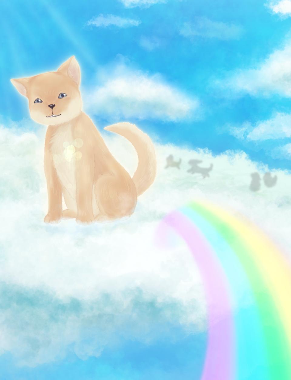 虹の橋 Illust of chiwo dog clouds rainbow sky 旅立ち