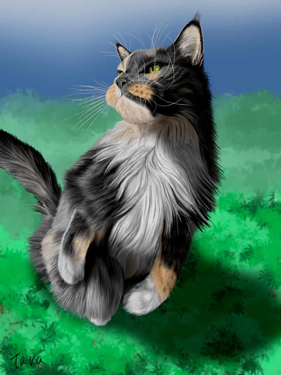 メインクーン5 Illust of ekadhooj cat 猫絵 painting ペイント kawaii drawing animal メインクーン 絵画 illustration