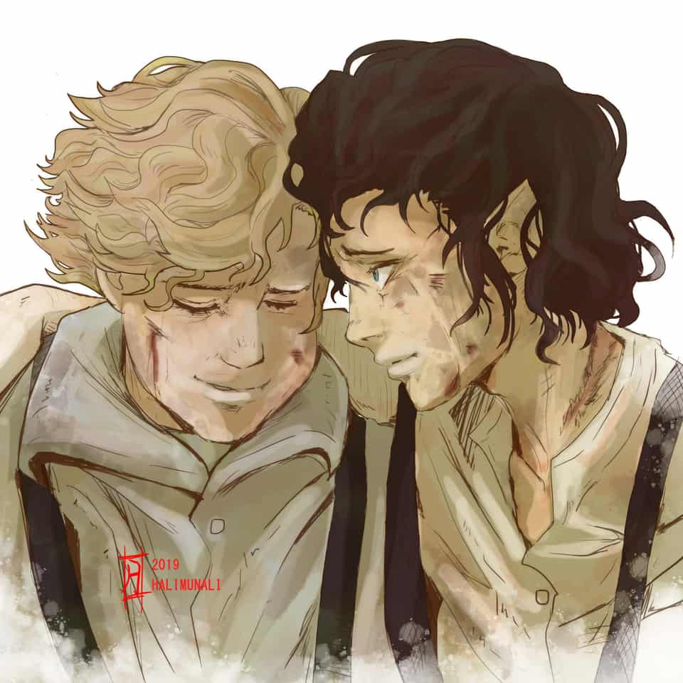 The Lord of The Rings Frodo and Samwise halimunali