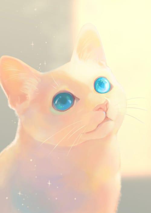 窓辺の光 Illust of 砂虫隼 生き物 animal キラキラ original cat medibangpaint