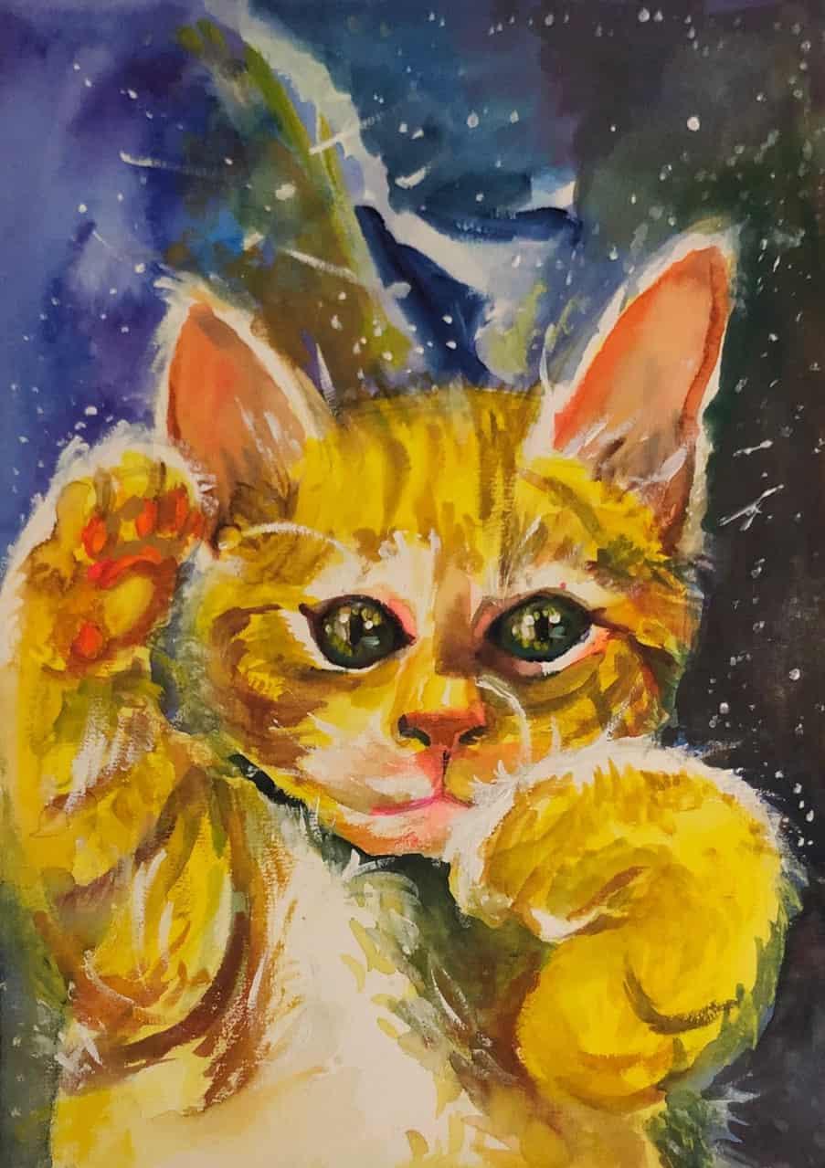 Junji Itou's cat