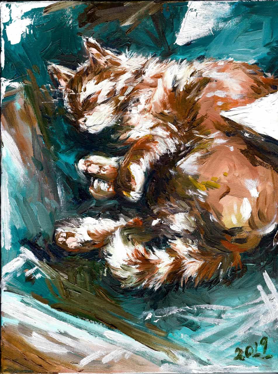 Sleeping Cat Illust of Chamomooo DOGvsCAT_CAT drawing painting oil 貓 color cat paint colour
