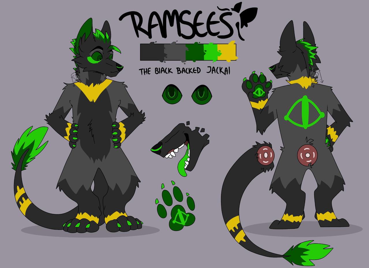Ramsees Ref [updated] Illust of Squeaky Plastic medibangpaint furry Jackal green oc Ref