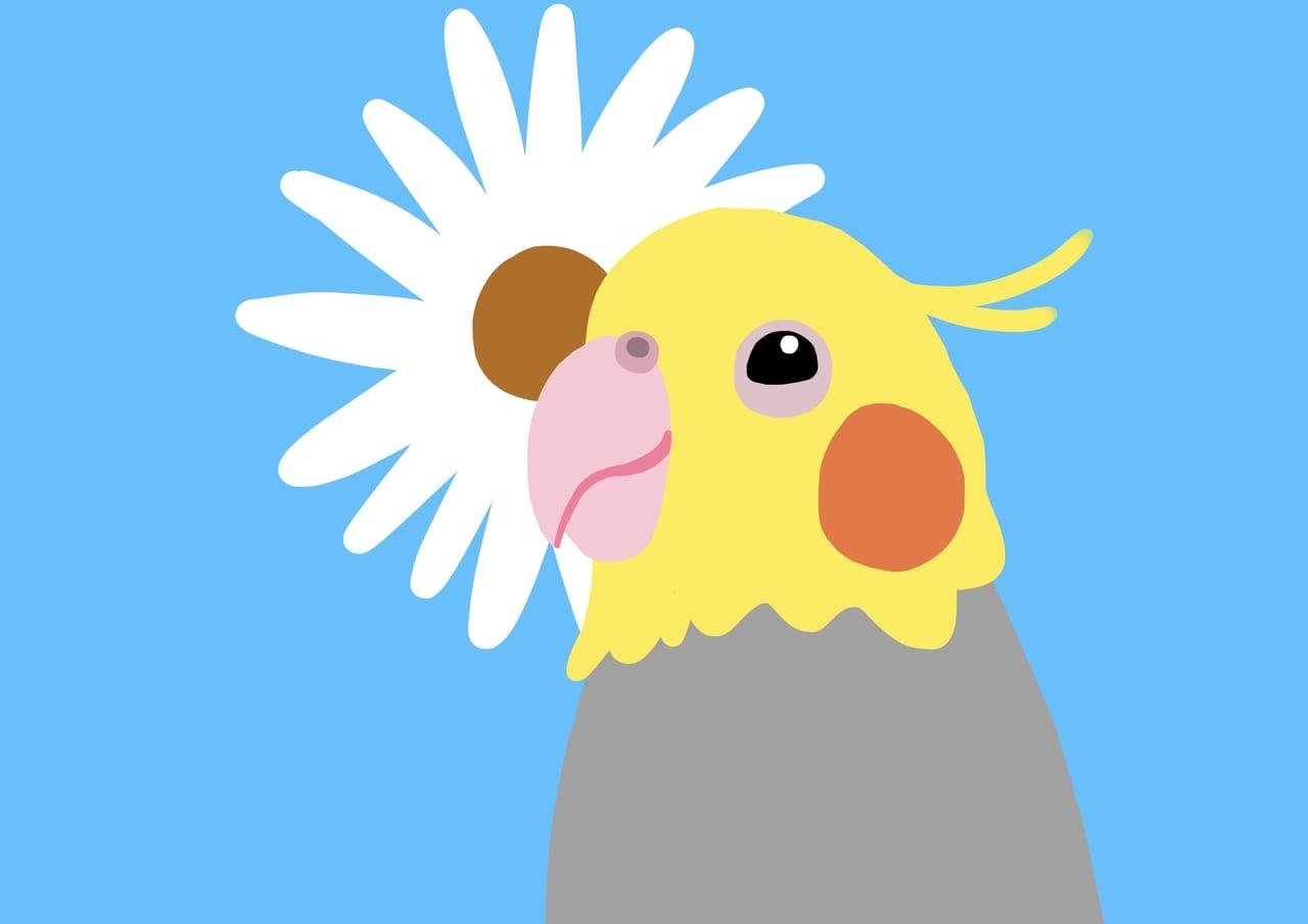 太陽花與太陽鳥  Two suns 兩個太陽Cockatiel オカメインコ Illust of Long Long April2021_Flower birds flower Comics kawaii chibi illustration animal design oc anime