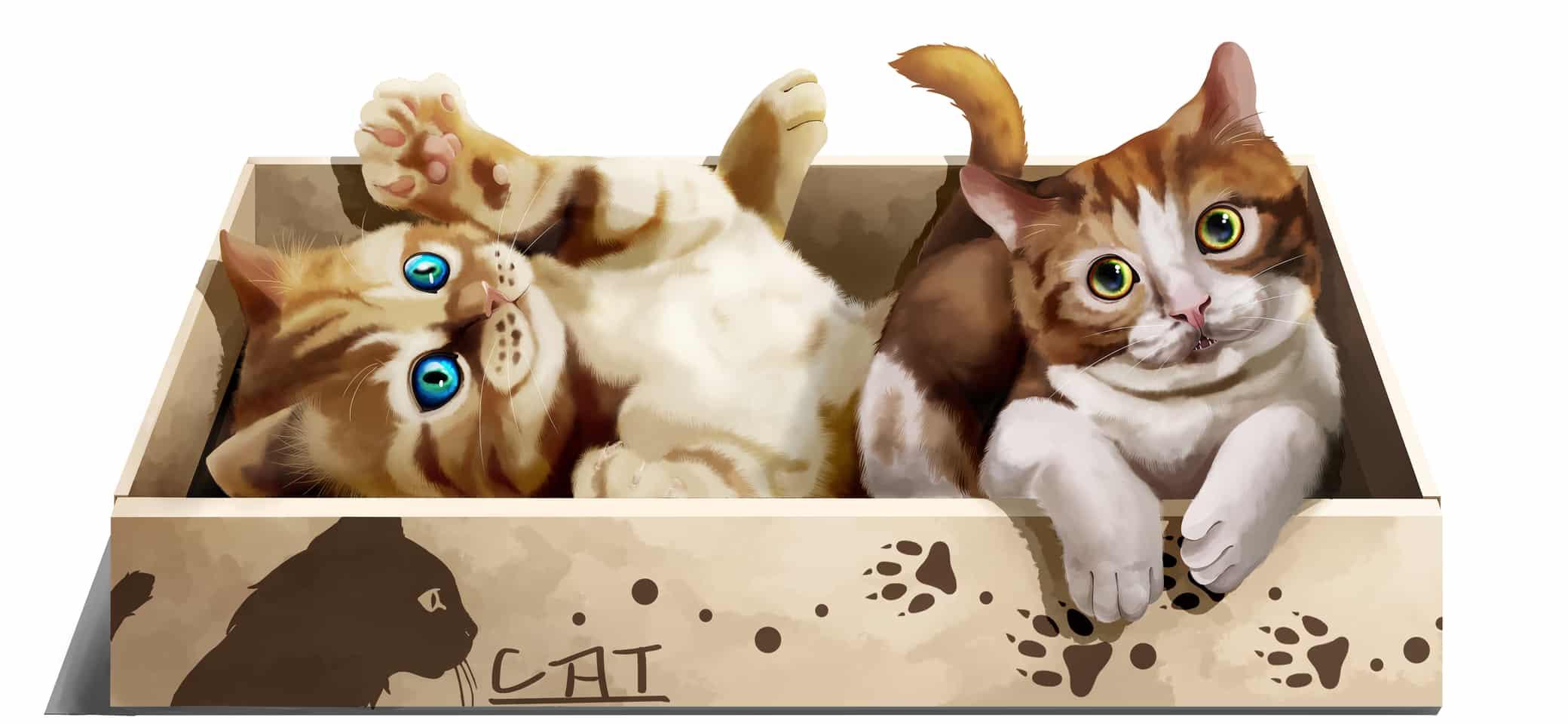 小貓與紙箱 Illust of 一撇 cat 貓