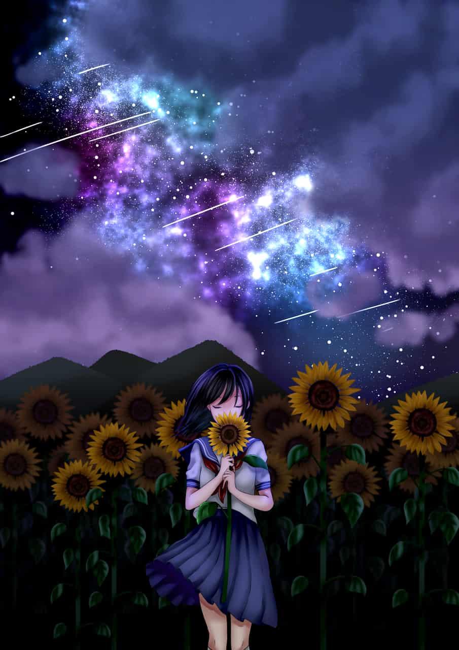 夏の夜空とひまわり