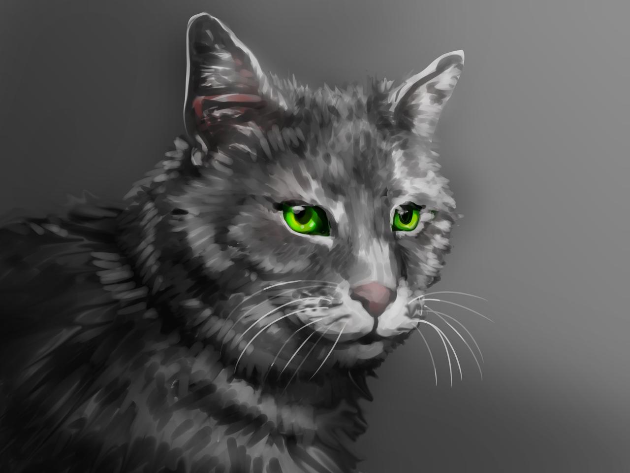 cat Illust of Akira Luca DOGvsCAT_CAT cute animal cat