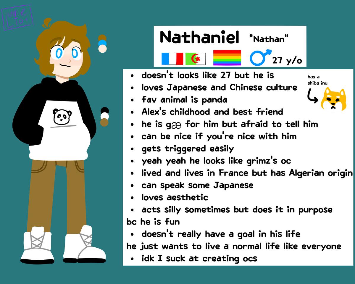 Nathan's ref. sheet (new oc)
