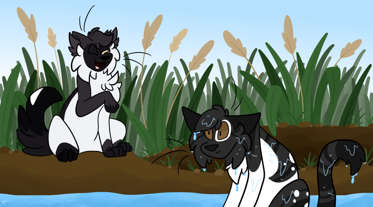 - laugh - Illust of ✧ Midnight ✧ oc cat river warriorcats medibangpaint roleplay