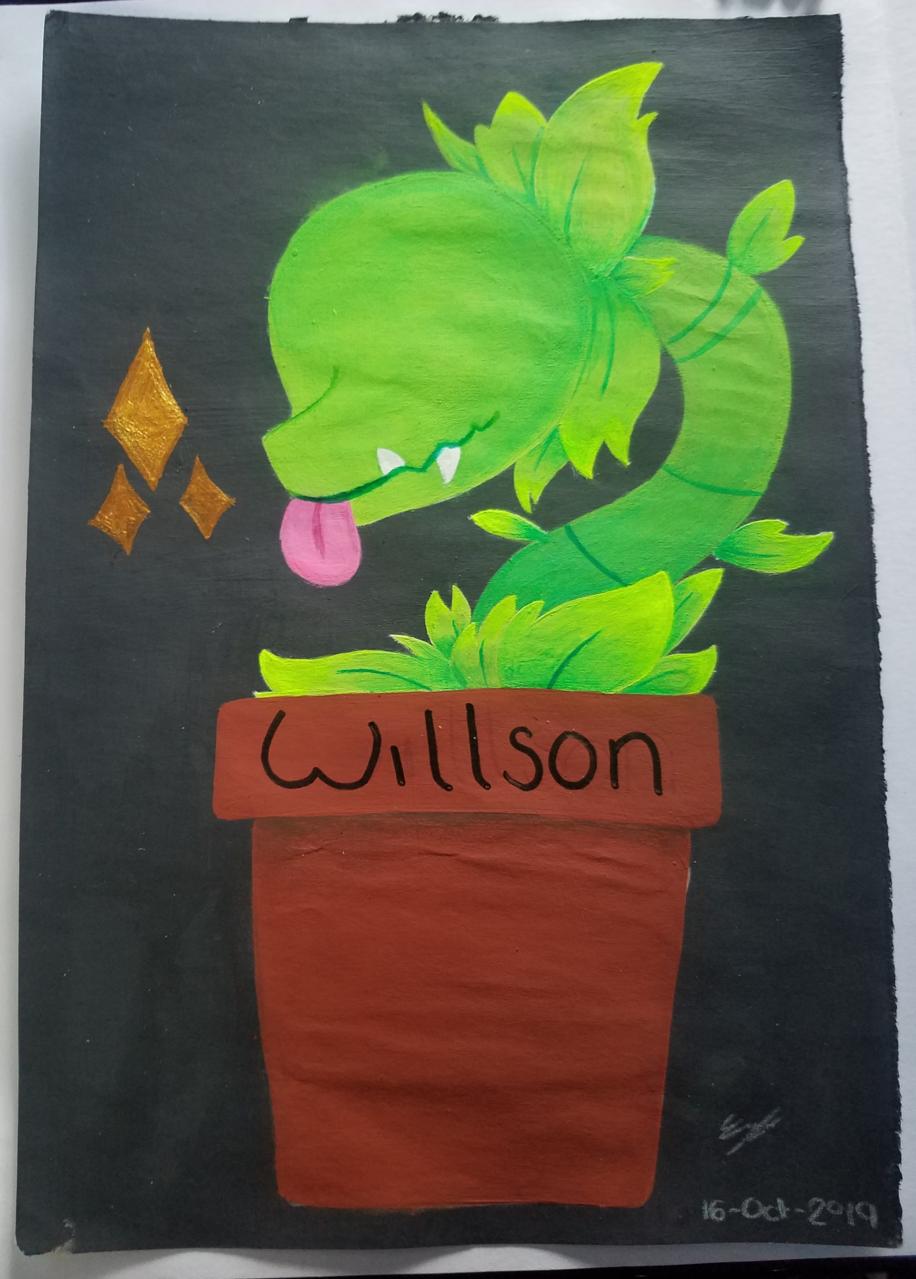 Willson 🥑