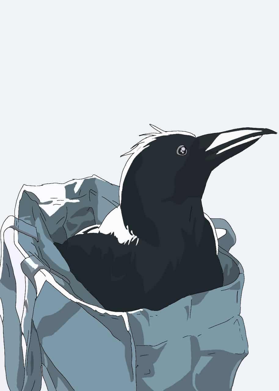 Cuervo Illust of Yendri lopez ARTstreet_Ranking Kyoto_Award2020_illustration Pinterest medibangpaint Cuervo medibang jumppaint
