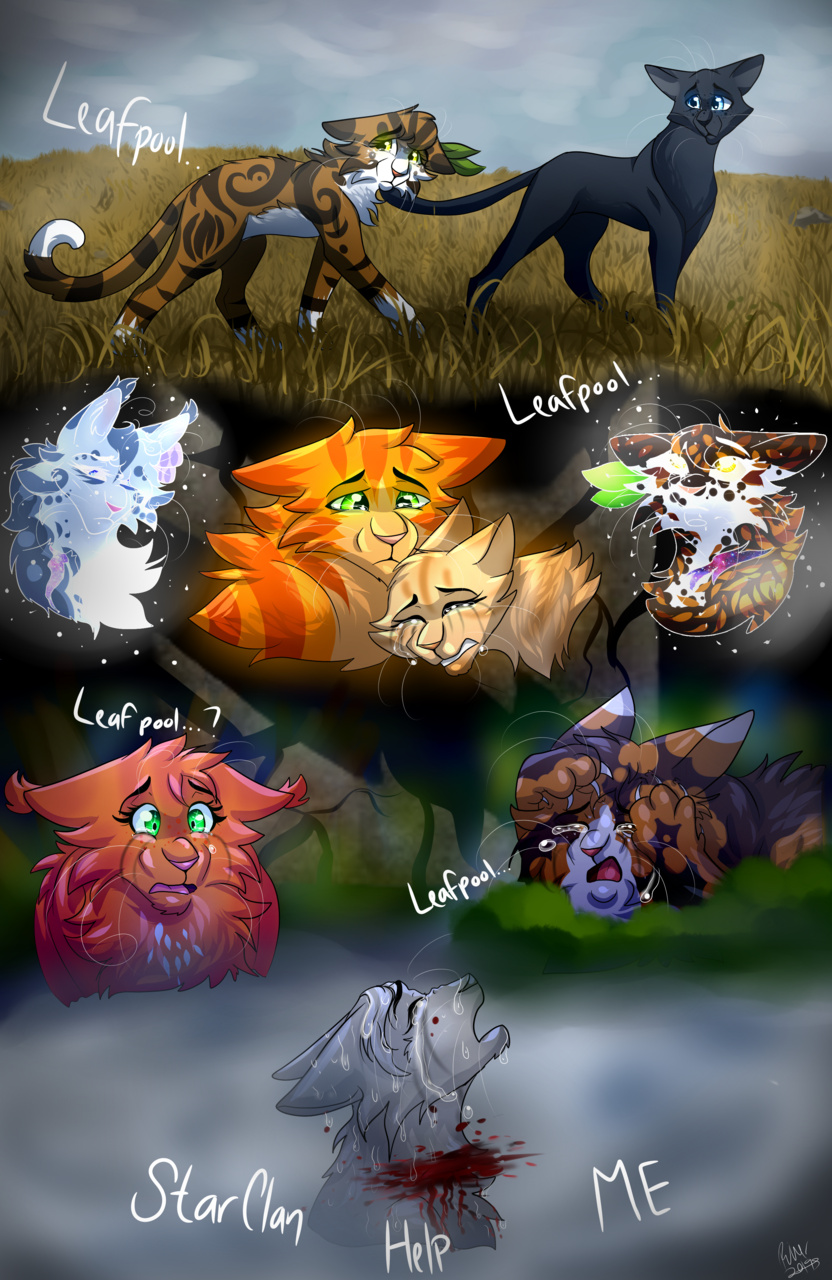 Im sorry Im reckless .:Warrior cats:.