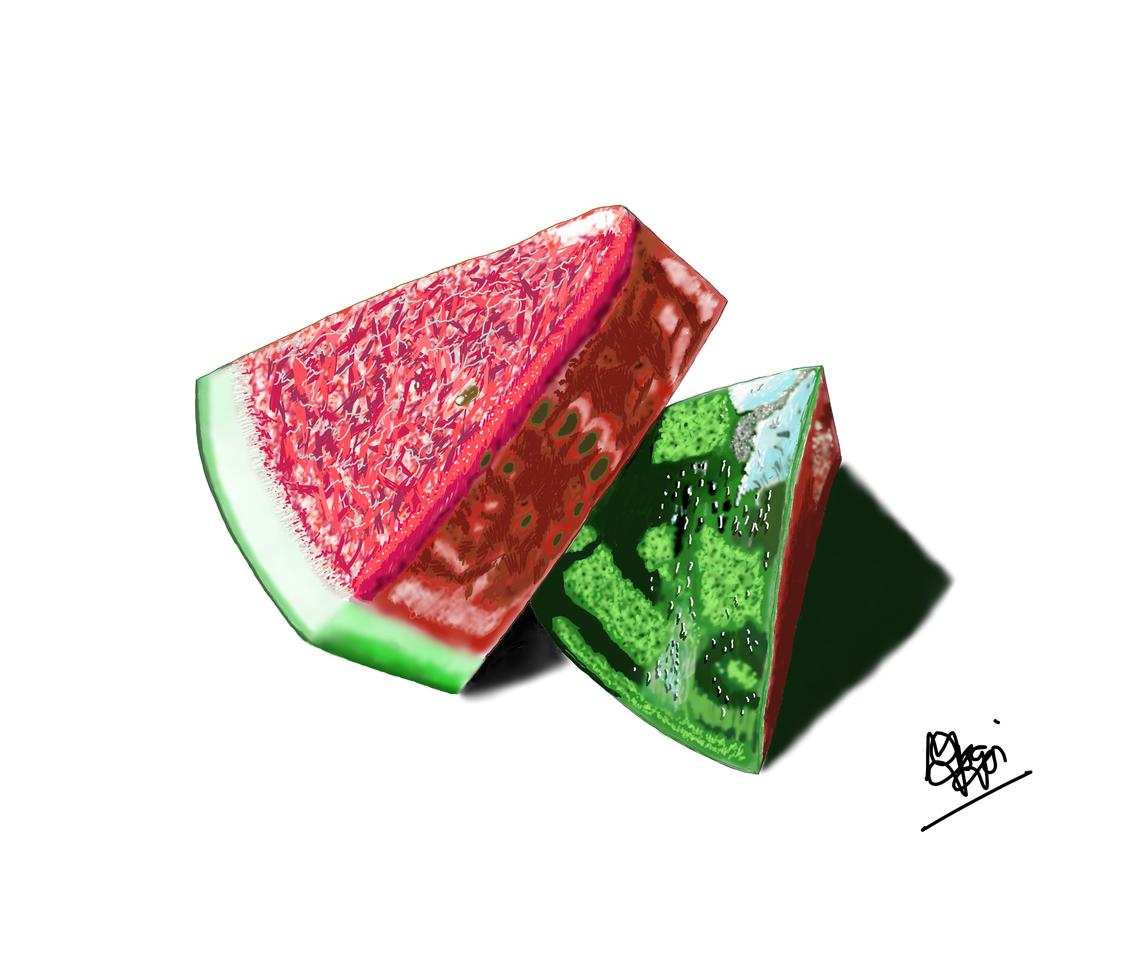 Wanna have watermelon? ??