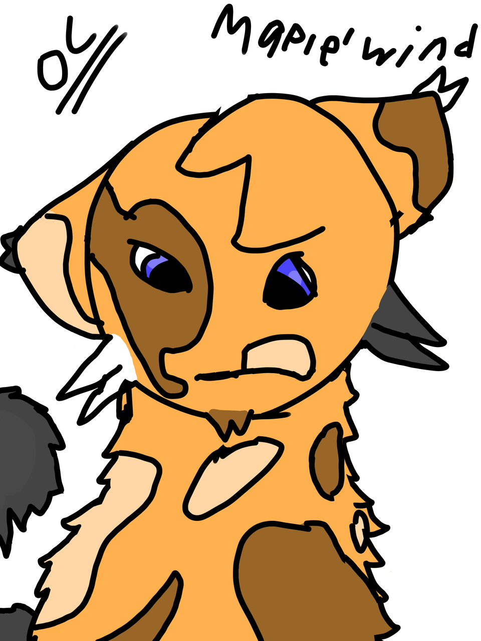 Maplewind Illust of Maple medibangpaint warriorcats cat warriors warriorsOC