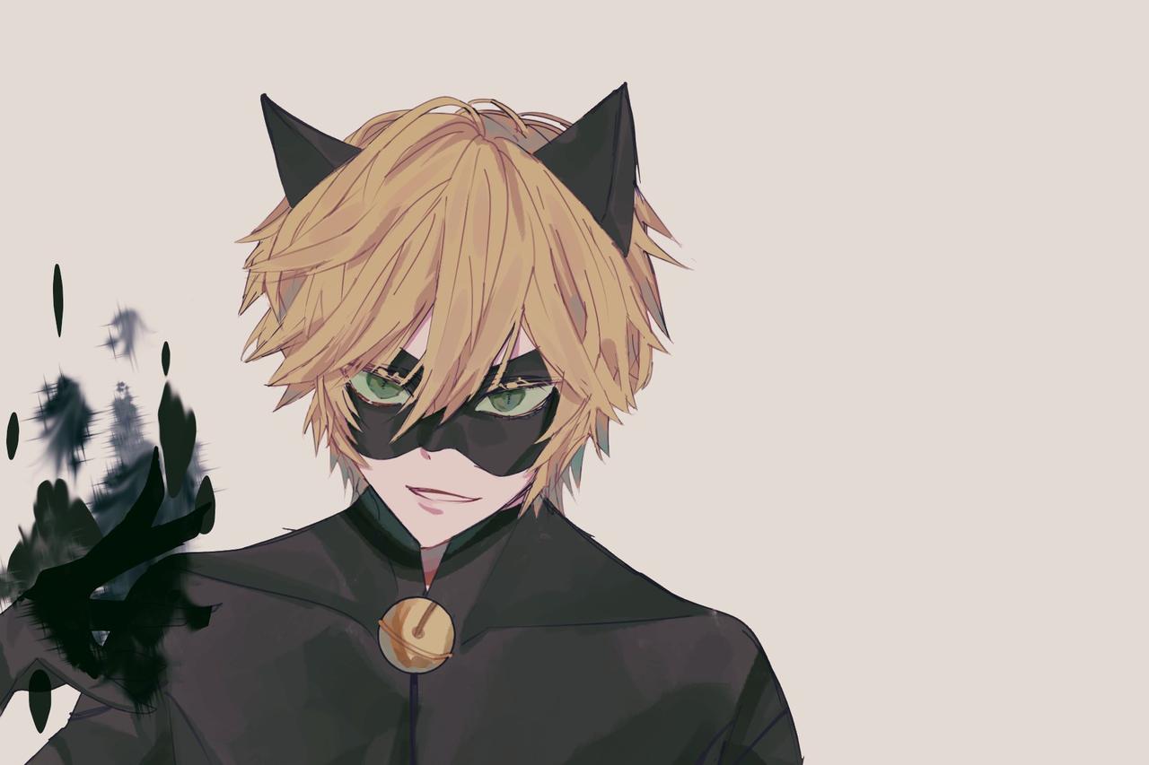 2017 blackcat Illust of @TMgenre medibangpaint