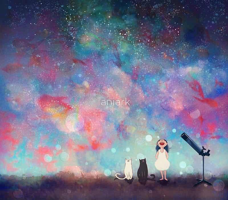 Under the Starry Night Illust of aNiark kyoto-illust2019 Jul.2019Contest space cat universe night summer aniark goldfish
