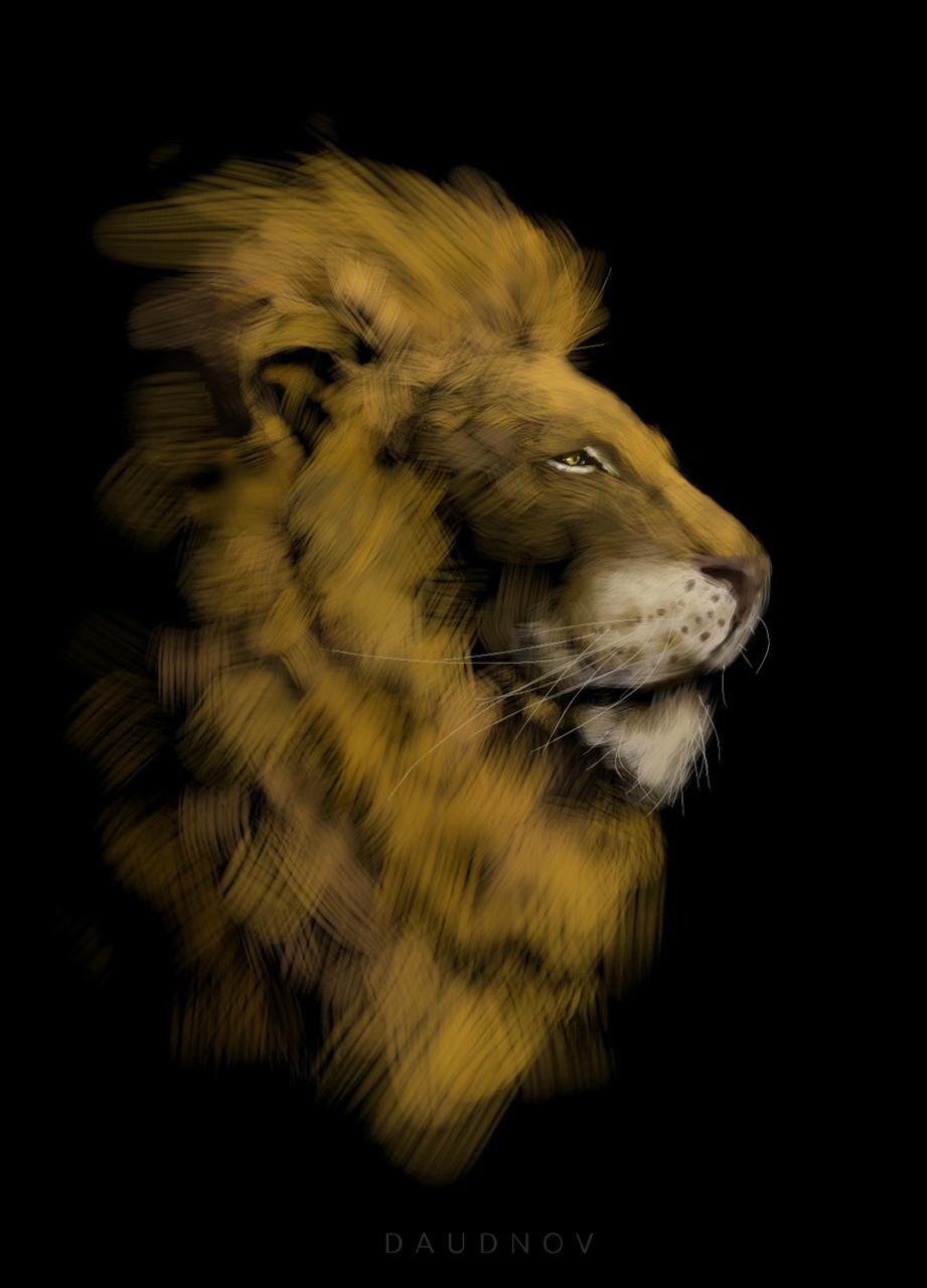Lion Illust of daudnov medibangpaint portrait animal wildlife beast Lion