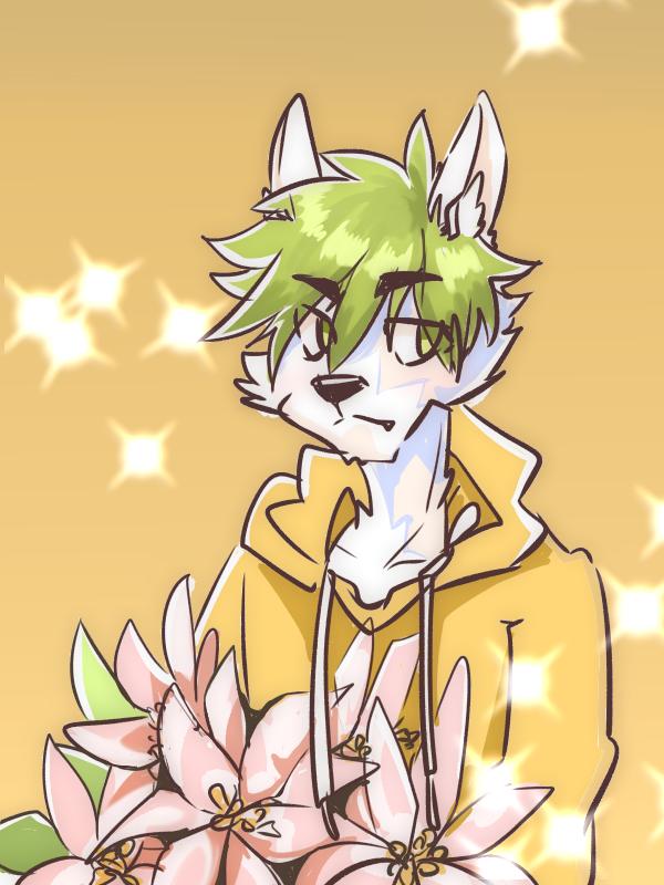 聖誕紅 Illust of 肯尼吉 December2020_Contest:Santa 獸人 wolf furry