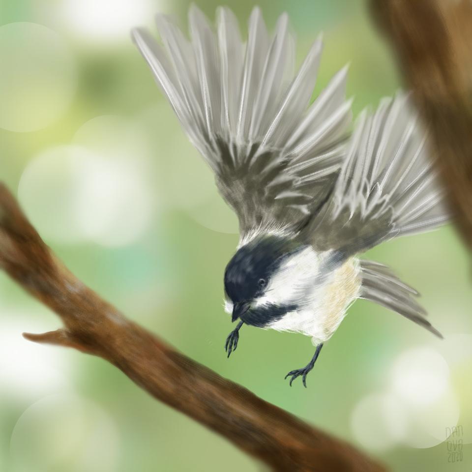 Lil bird Illust of daudnov medibangpaint wings birds Flying nature Tree