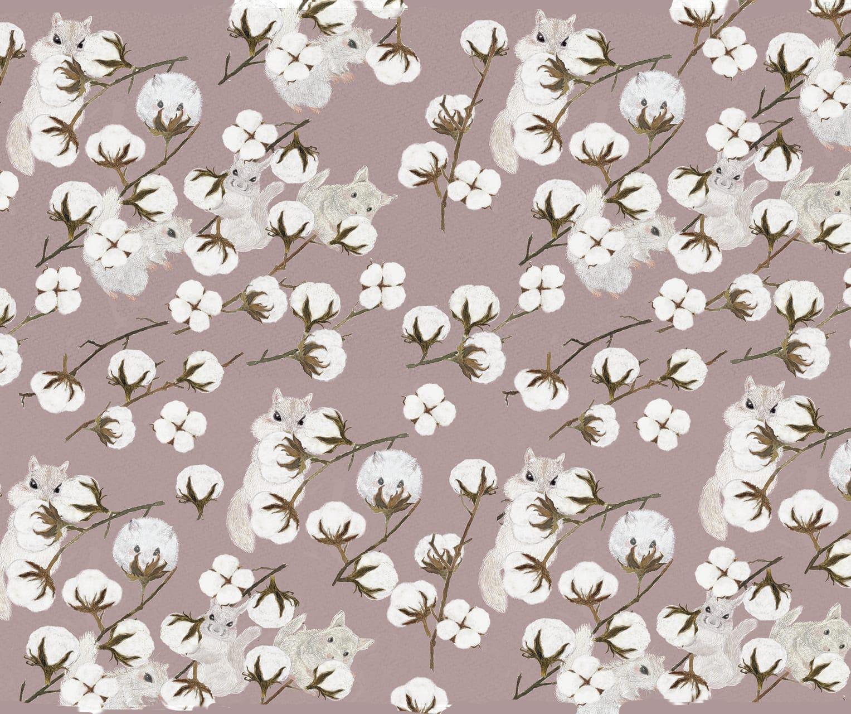 綿花と小動物(シマリス、チンチラ)