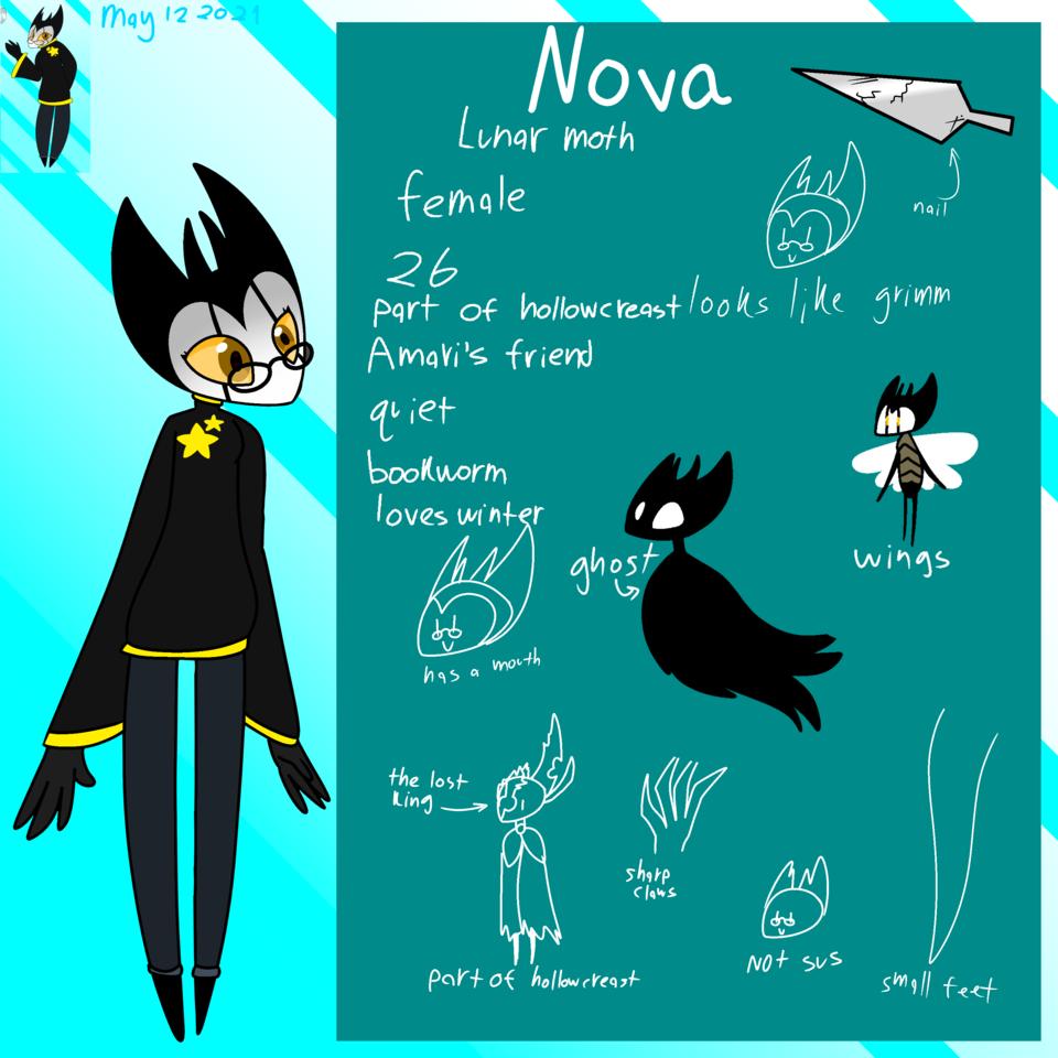 Nova ref sheet Illust of ❄Ash❄ Hollow oc Hollow_Knight Knight