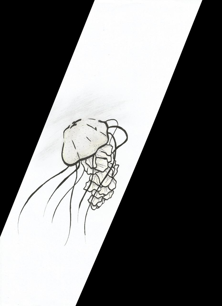 1/ Brume et Pointillés (Inktober 2019) Illust of Leiane méduse Inktober pointillés 2019 brume