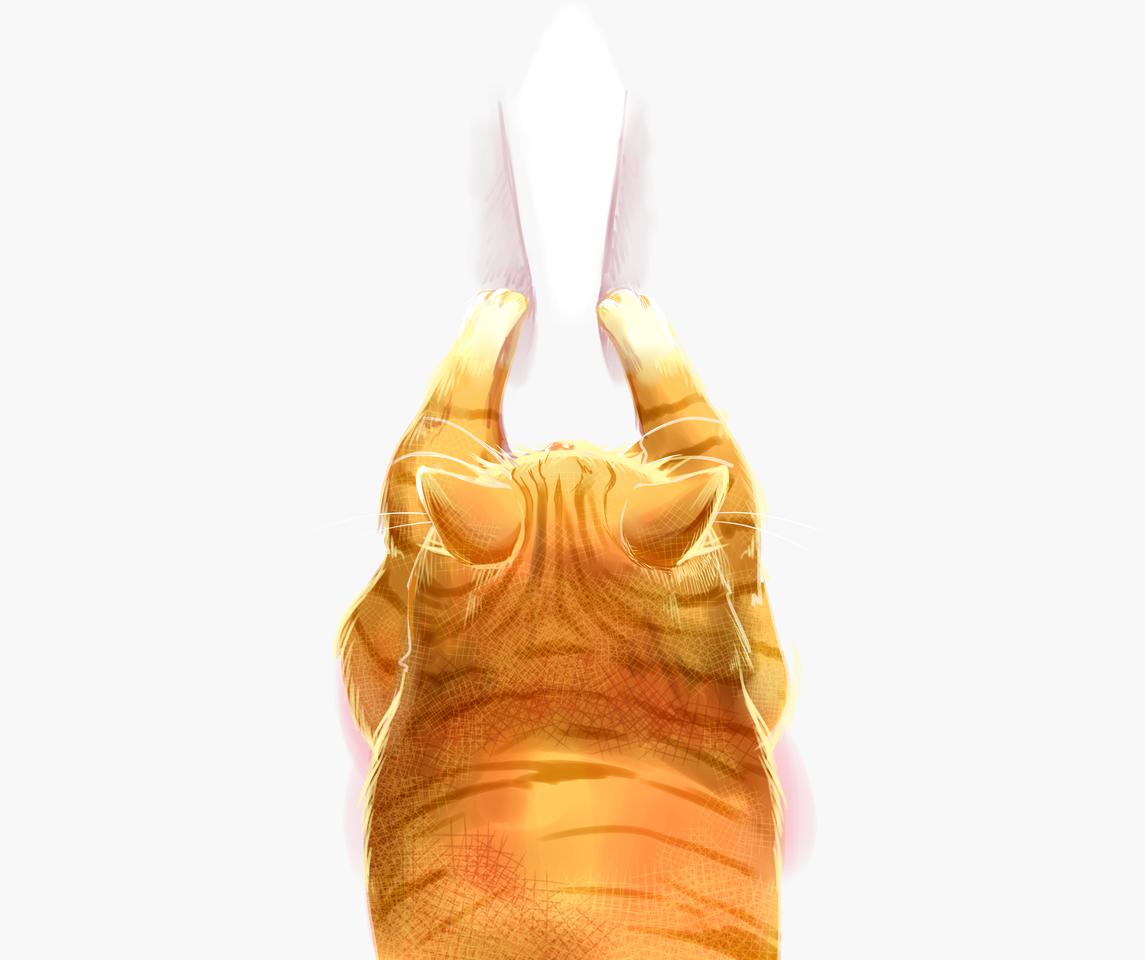 鼻つまみ猫マスク Illust of とむくれそん MaskDesignContest cat 後ろ頭