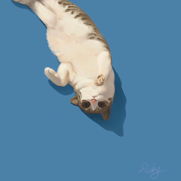 貓咪 にゃん〜 Illust of RubyPikachu ARTstreet_Ranking medibangpaint